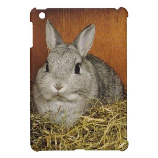 Netherland Dwarf Rabbit Case For The iPad Mini