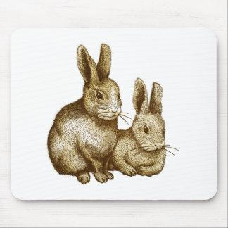 Netherland Dwarf: Rabbit Mouse Pad