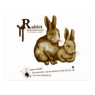Netherland Dwarf Rabbit - sepia はがき