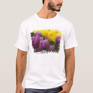 Netherlands aka Holland), Lisse. Keukenhof 10 T-Shirt