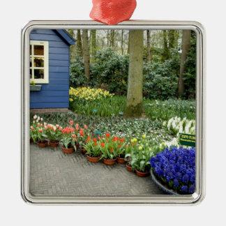 Netherlands aka Holland), Lisse. Keukenhof 11 Christmas Ornament