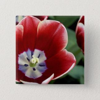 Netherlands (aka Holland), Lisse. Keukenhof 3 15 Cm Square Badge