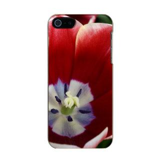 Netherlands (aka Holland), Lisse. Keukenhof 3 Incipio Feather® Shine iPhone 5 Case