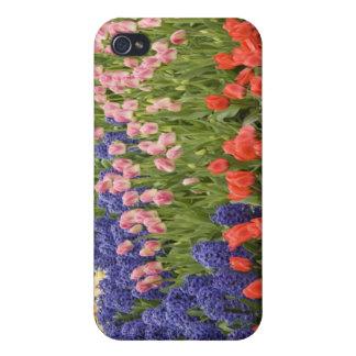 Netherlands aka Holland), Lisse. Keukenhof 8 iPhone 4 Case