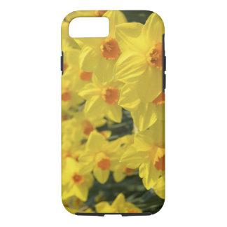 Netherlands, Holland, Lisse, Keukenhof Gardens, iPhone 7 Case