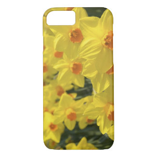 Netherlands, Holland, Lisse, Keukenhof Gardens, iPhone 8/7 Case