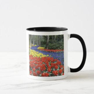 Netherlands, Holland, Lisse, Keukenhof Gardens Mug