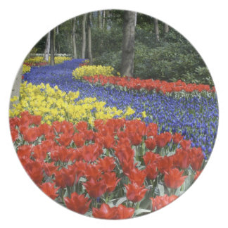 Netherlands, Holland, Lisse, Keukenhof Gardens Plate