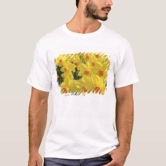Netherlands, Holland, Lisse, Keukenhof Gardens, T-Shirt