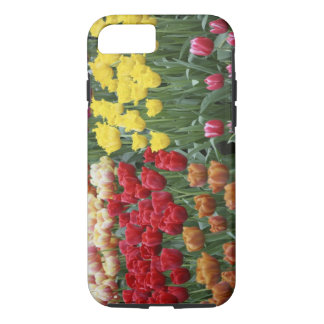Netherlands, Keukenhoff Gardens, tulips. iPhone 8/7 Case