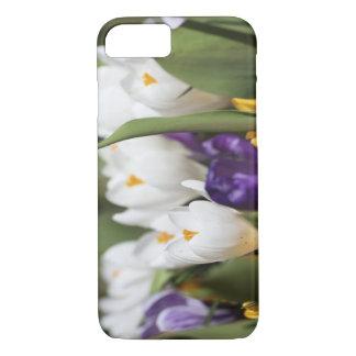 Netherlands, Keukenhoff Gardens, Tulips. iPhone 8/7 Case