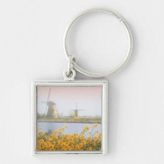 Netherlands, Kinderdijk. Windmills next to 2 Key Chain