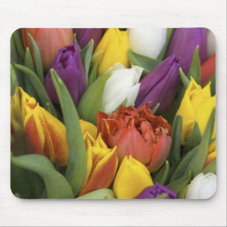 Netherlands, South Holland, Amsterdam Mouse Mat