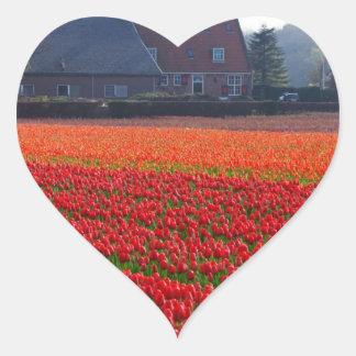 Netherlands: Tulip Field in Holland Heart Sticker