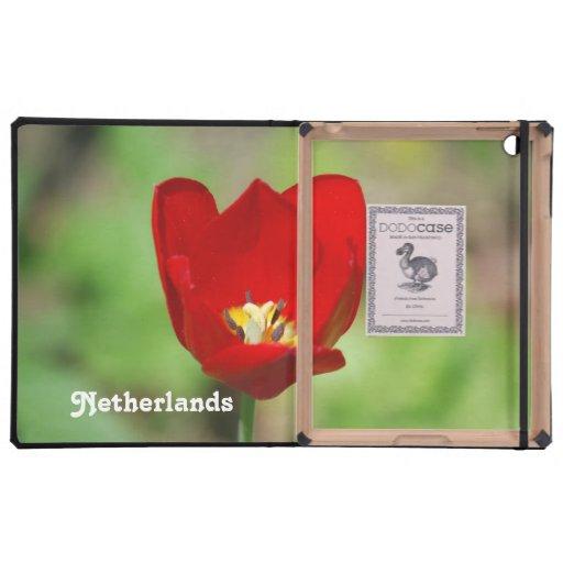 Netherlands Tulips iPad Covers