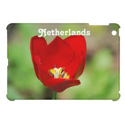 Netherlands Tulips iPad Mini Cases