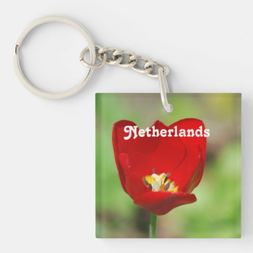 Netherlands Tulips Square Acrylic Key Chain