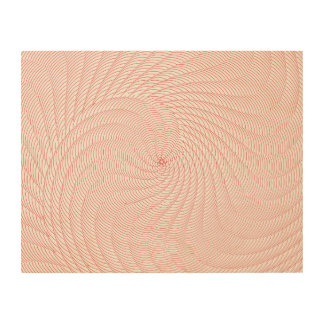 Netted Pattern Red Wood Canvases