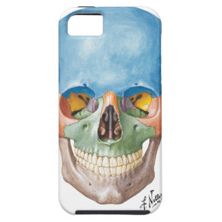 Netter Skull iPhone 5 Case