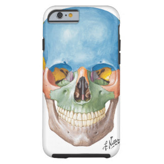 Netter Skull iPhone 6 case