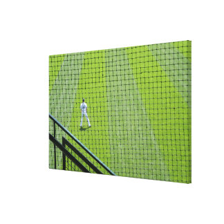 Netting with baseball player on green grass. stretched canvas prints