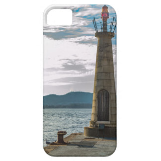 Network lantern barely there iPhone 5 case