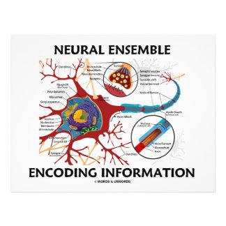 Neural Ensemble Encoding Information (Neuron) 21.5 Cm X 28 Cm Flyer