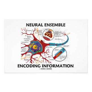 Neural Ensemble Encoding Information (Neuron) Custom Stationery