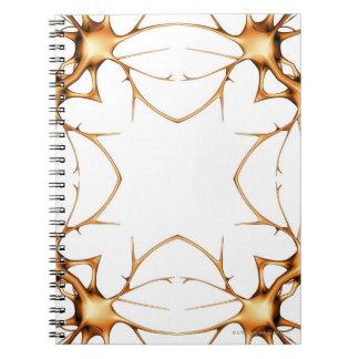 Neurons 2 notebook