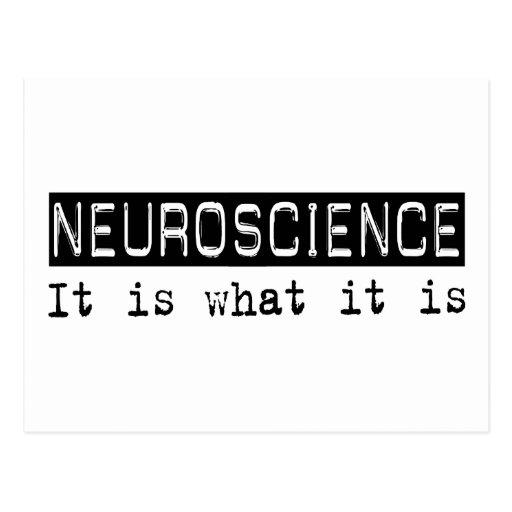 Neuroscience It Is Post Card