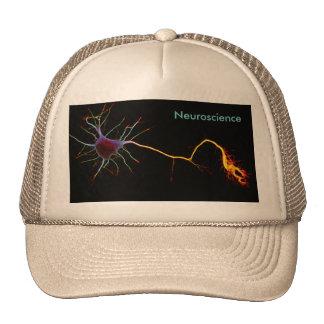 Neuroscience, neuron, science cap