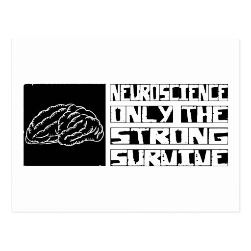 Neuroscience Survive Post Cards
