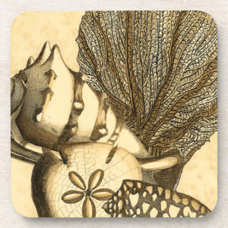 Neutral Shells and Coral Collection Coaster