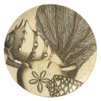 Neutral Shells and Coral Collection Plate