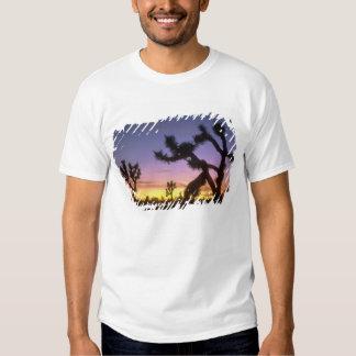 NEVADA. USA. Joshua trees Yucca brevifolia) T Shirts