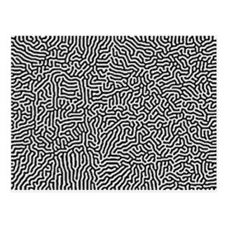 Never Ending Maze Postcard
