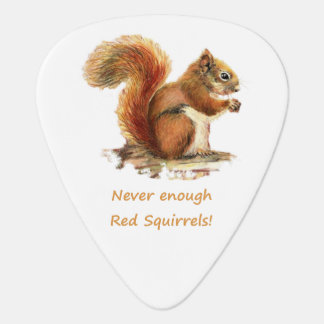 Never Enough Red Squirrels Fun Animal Quote Cute Guitar Pick