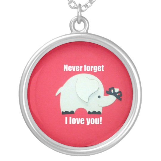 Never forget I love you! Silver Plated Necklace