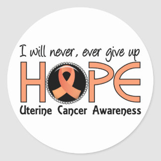 Never Give Up Hope 5 Uterine Cancer Stickers