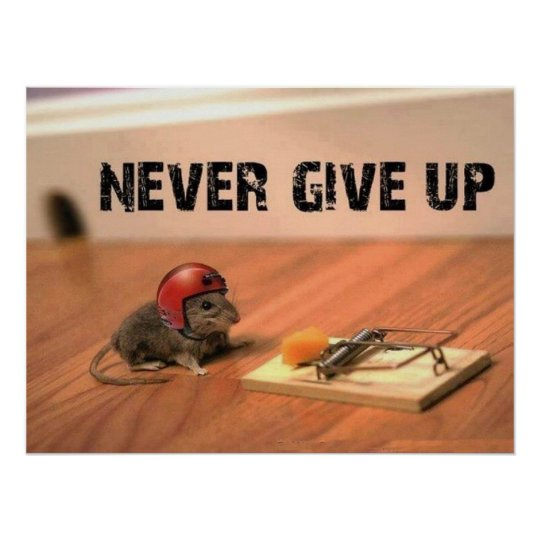 Never Give Up Mouse Poster