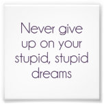 Never Give Up On Your Stupid Dreams Art Photo