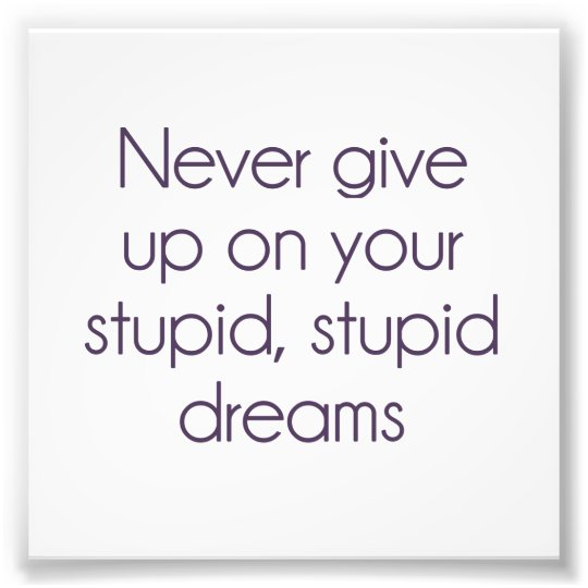 Never Give Up On Your Stupid Dreams Photo