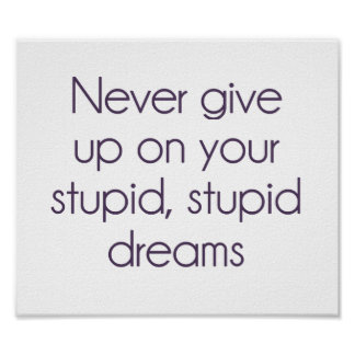 Never Give Up On Your Stupid Dreams Poster