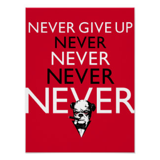 Never Give Up ! Poster