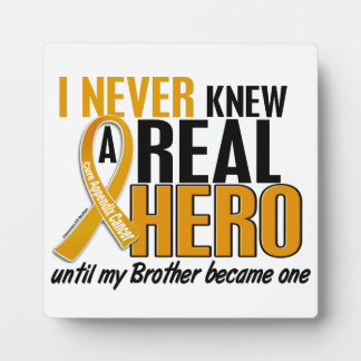 Never Knew a Hero 2 Brother Appendix Cancer Plaques