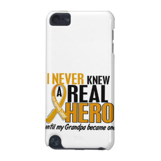 Never Knew a Hero 2 Grandpa Appendix Cancer iPod Touch (5th Generation) Cover
