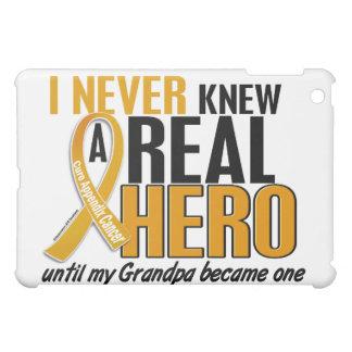 Never Knew a Hero 2 Grandpa Appendix Cancer Case For The iPad Mini