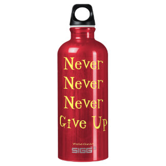 Never Never Never Give Up Quote SIGG Traveller 0.6L Water Bottle