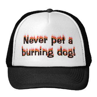 Never pet a burning dog! mesh hat