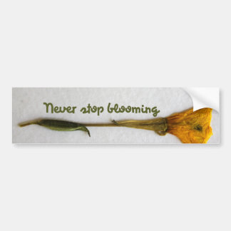 Never stop blooming bumper stickers